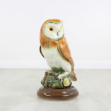 Markay Owl
