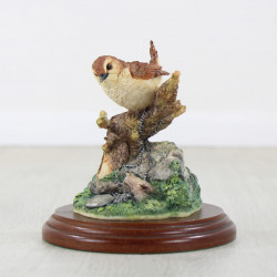 Wren With Chain And Locket