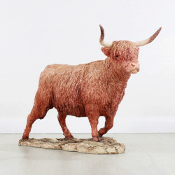 Highland Cow Contemporary