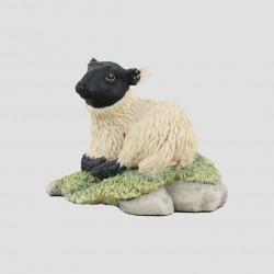 Herbert (Lamb)