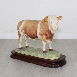 Simmental Bull Issued 1979