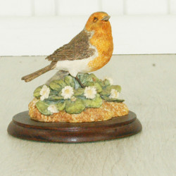 Robin With Daises