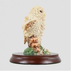 Baby Tawny Owlet Was £12.95